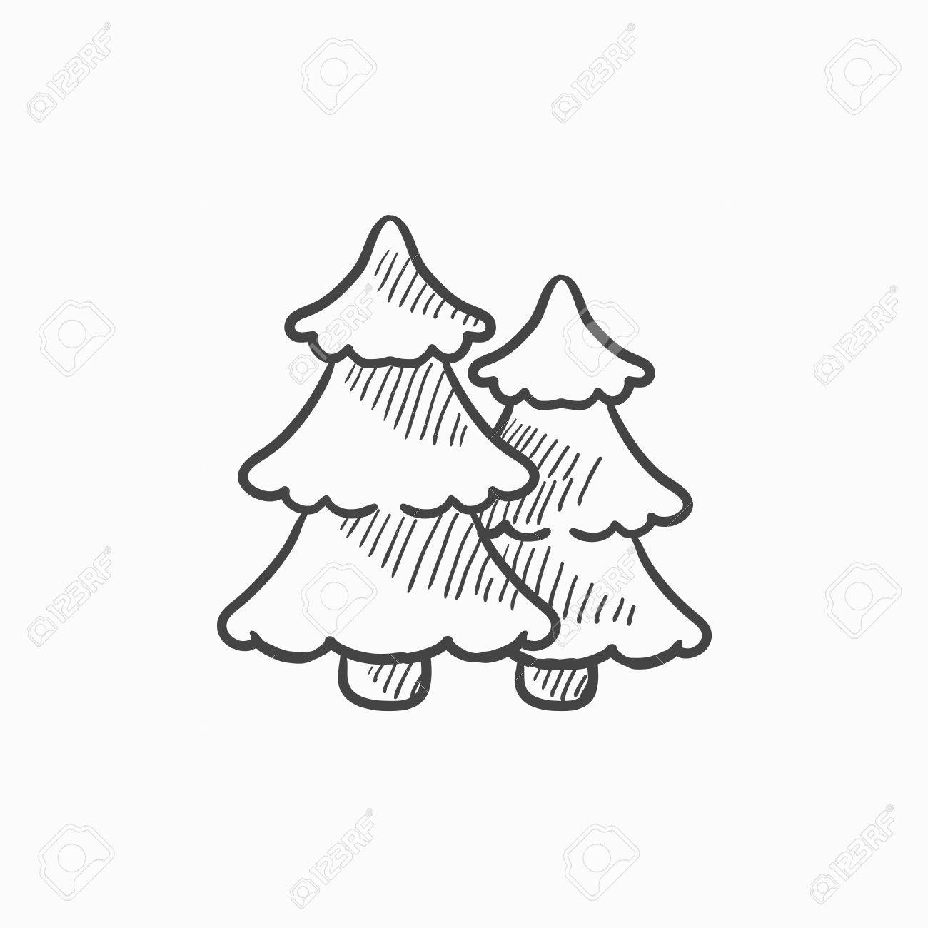 1300x1300 Pine Trees Vector Sketch Icon Isolated On Background. Hand Drawn