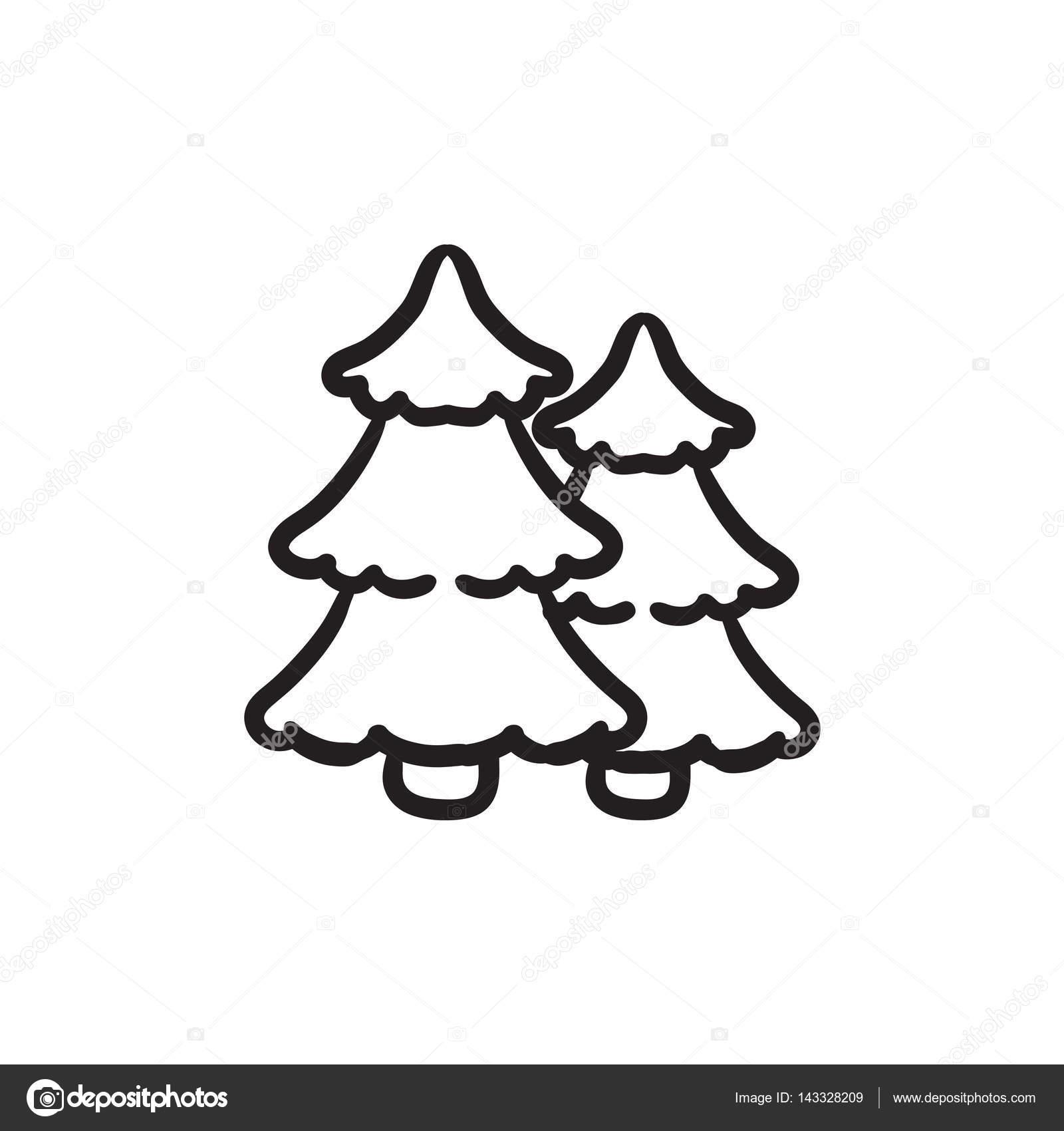 1600x1700 Pine Trees Sketch Icon. Stock Vector Rastudio