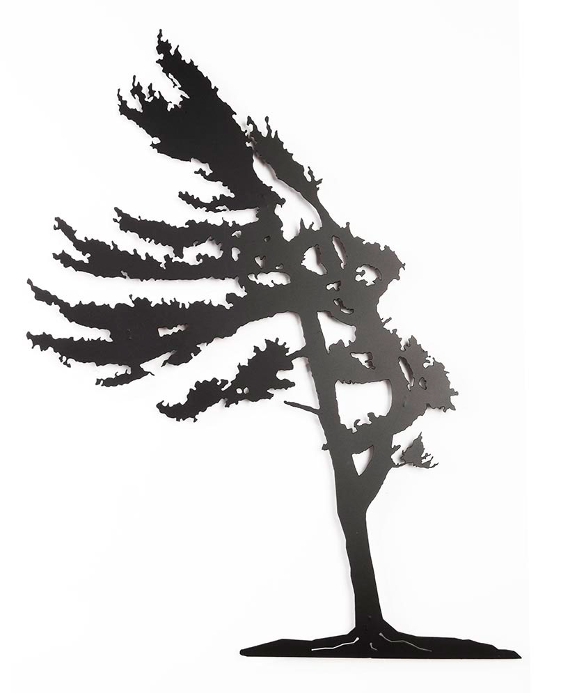 829x995 Windswept Pine Tree