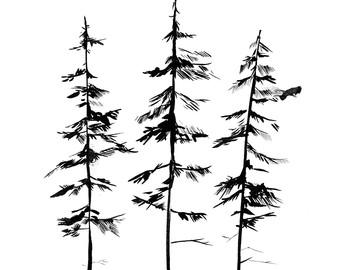 340x270 Pine Tree Forest, Three Tree Illustrations, Minimalist Drawing