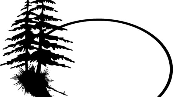 570x320 Simple Pine Tree Drawing Silhouette Clip Art Clipart