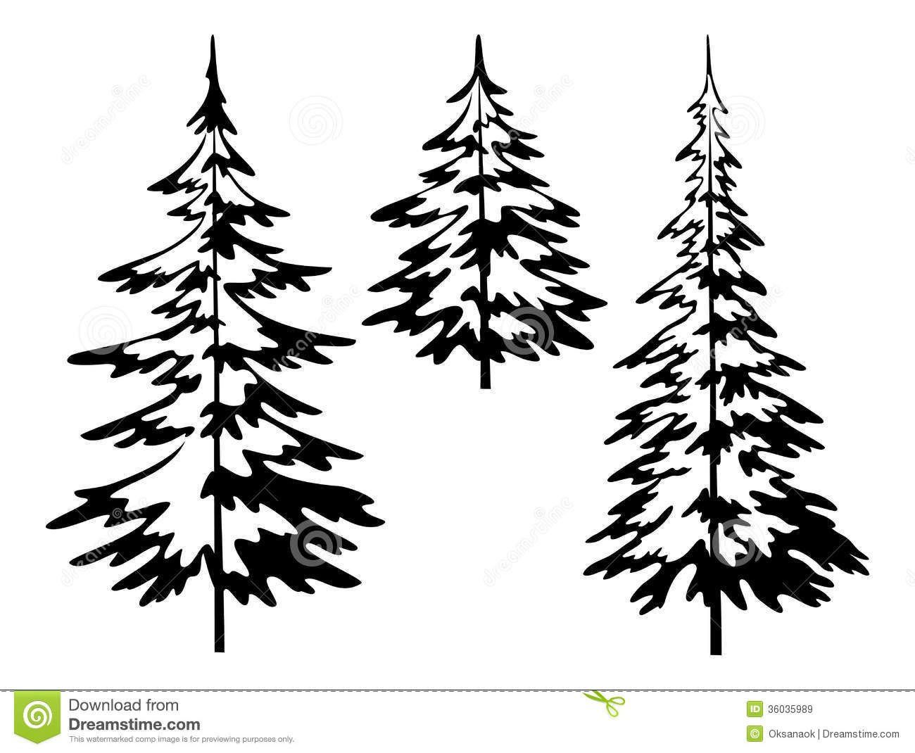 1300x1070 Black And White Pine Tree Outline Sketch Coloring Page Svg