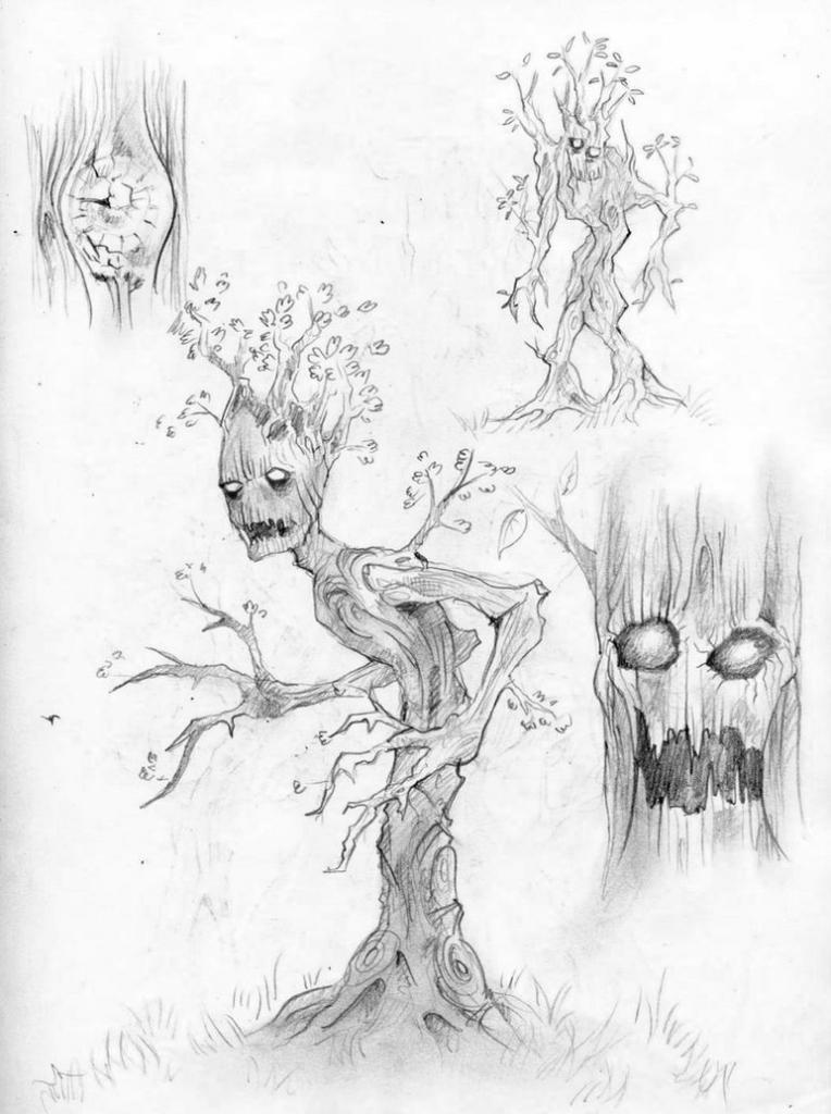 764x1024 Pencil Sketches Trees