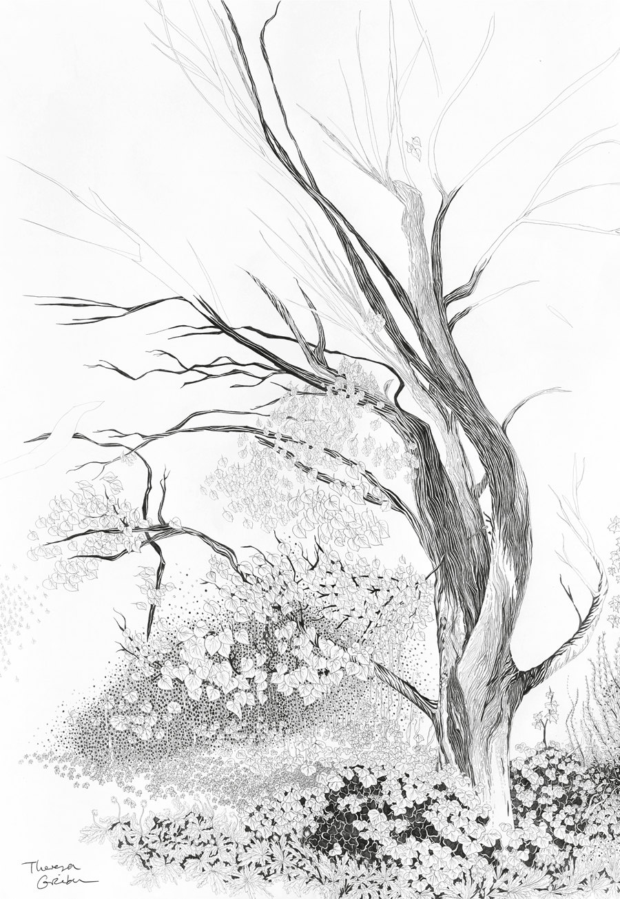 900x1305 Tree Drawing Woodland Print Woodland Nature Decor Tree