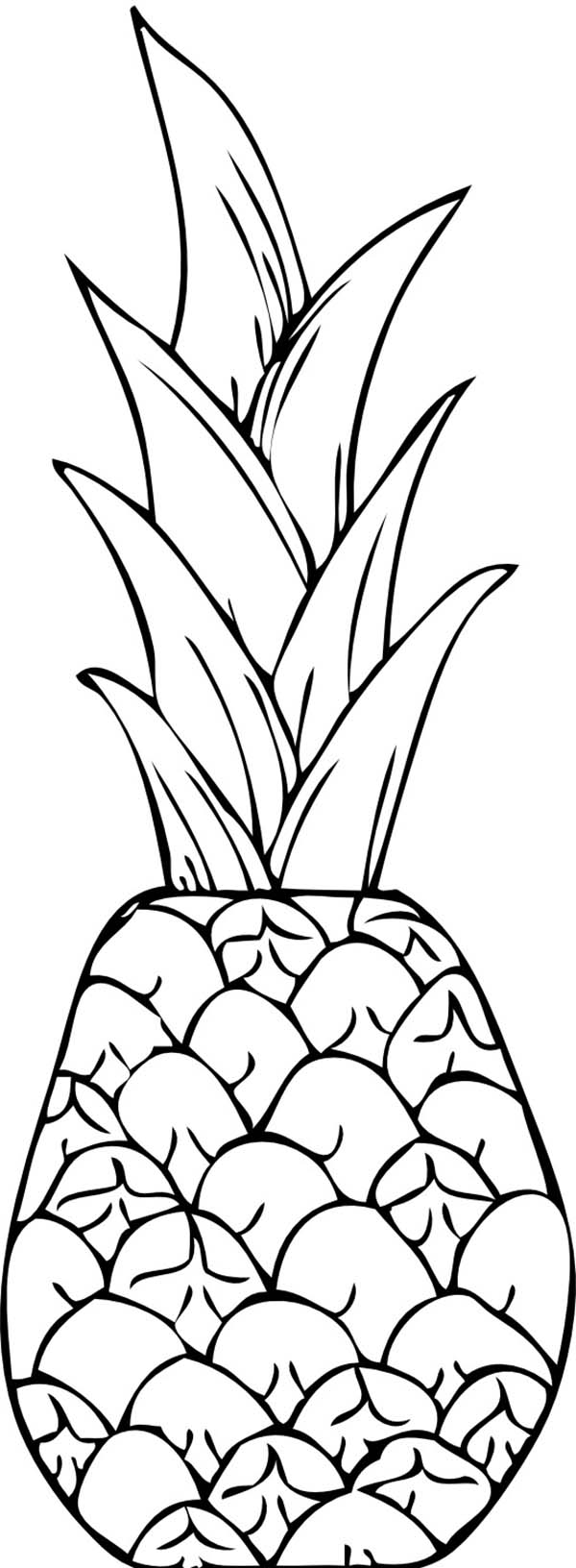 Pineapple Line Drawing