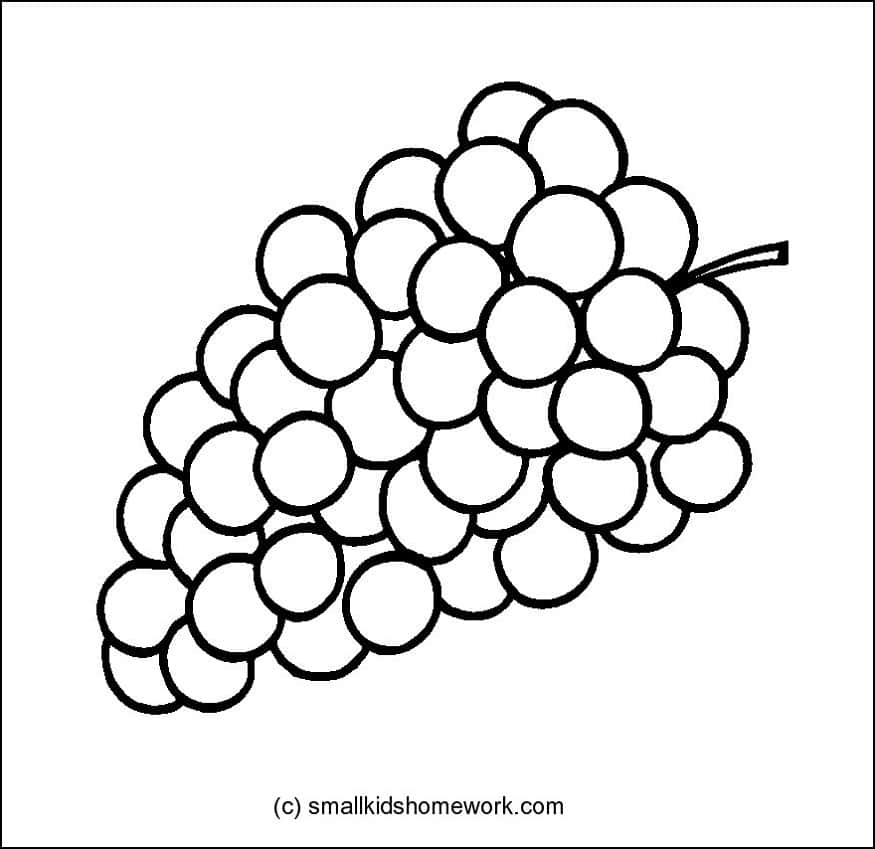 875x849 Fruits Outline Pictures And Coloring Pages For Little Kids