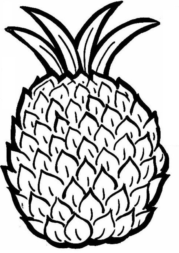 620x875 Pineapple Coloring Page