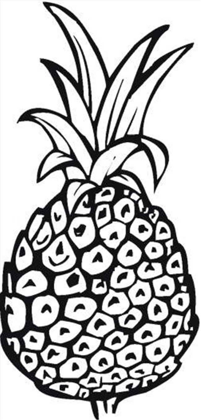 672x1353 Best Pineapple Coloring Pages Free Have Pineapple Coloring Page