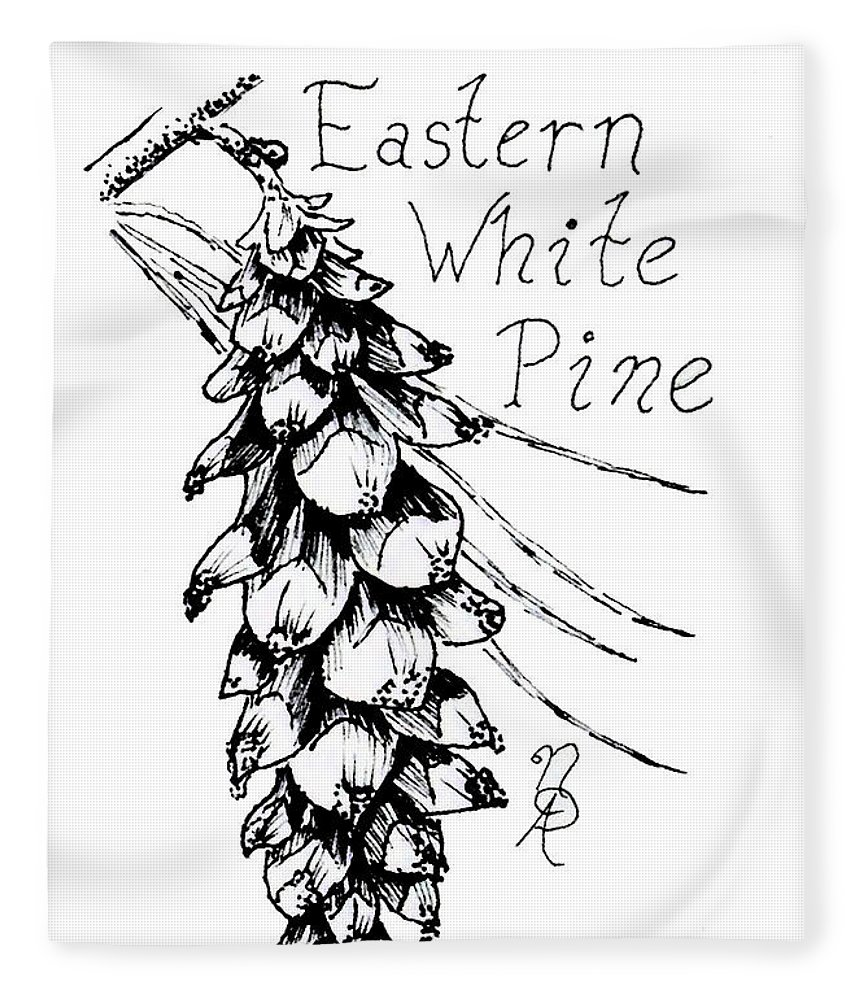 860x1000 Eastern White Pine Cone On A Branch Fleece Blanket For Sale By