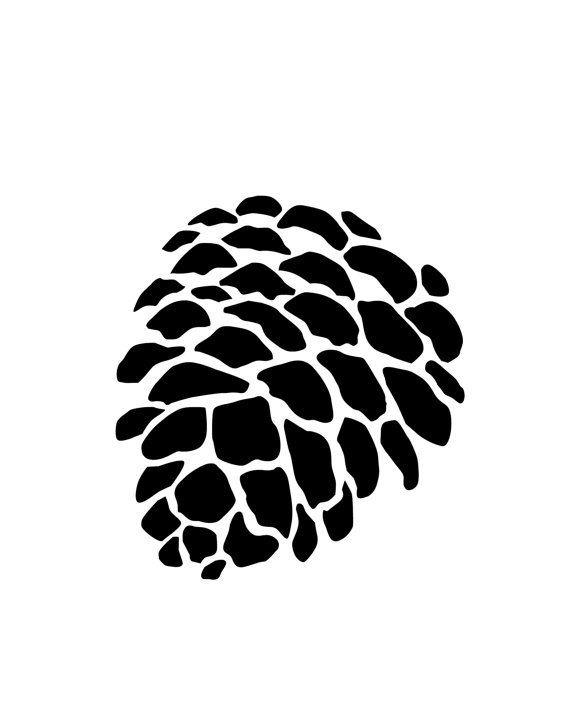 570x713 Drawn Pine Cone Abstract