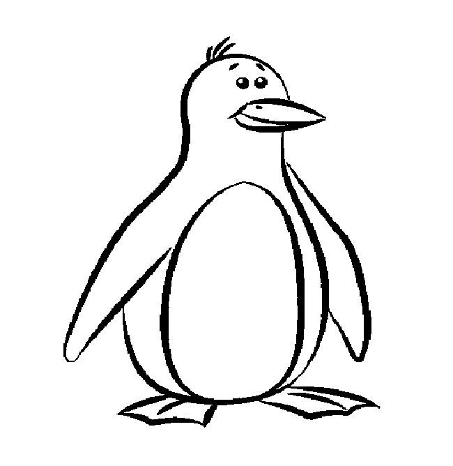 650x668 Enjoyable Design Penguin Outline B Free Images At Clker Com Vector