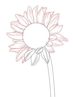 236x314 How To Draw A Sunflower Sunflowers, Drawing Flowers And Drawings