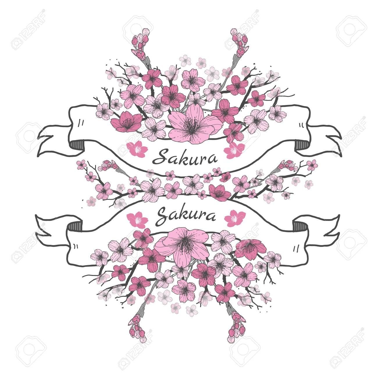 1300x1300 Flower Ribbon Of Sakura. Drawing And Sketch On White Background