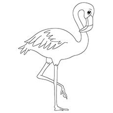 230x230 Flamingo Coloring Book Flamingo Coloring Book Pages