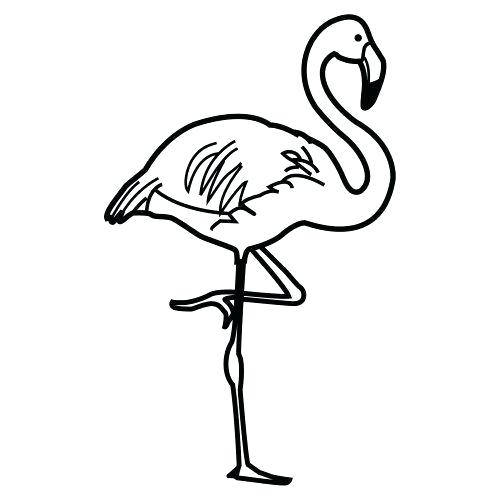 500x500 Flamingo Coloring Pages Printable Click To See Printable Version