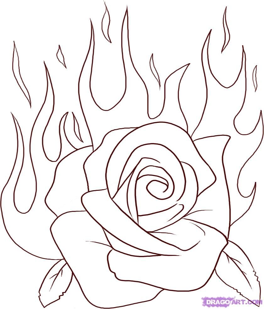 840x983 Roses Drawing Step 5 Once You Are Done Your Sketch Should End Up