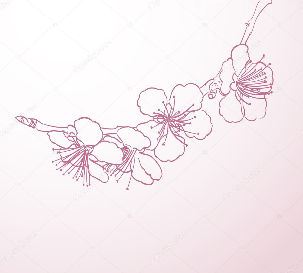 1023x920 Blossoming Tree Flowers Line Art Hand Drawing. Spring Stylish Ba