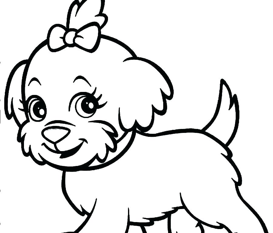 900x768 Poodle Coloring Pages To Print
