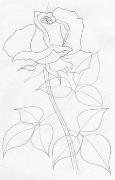 236x369 Lotus Flower Drawing How To Draw A Water Lily Step 9 Handmade