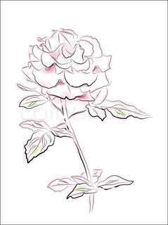 239x320 Line Art Roses On The Watercolor Background Stock Vector Colourbox