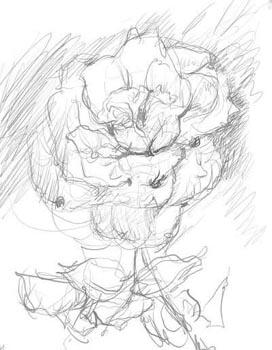 272x350 Pink Rose With Ant. Alexei Antonov