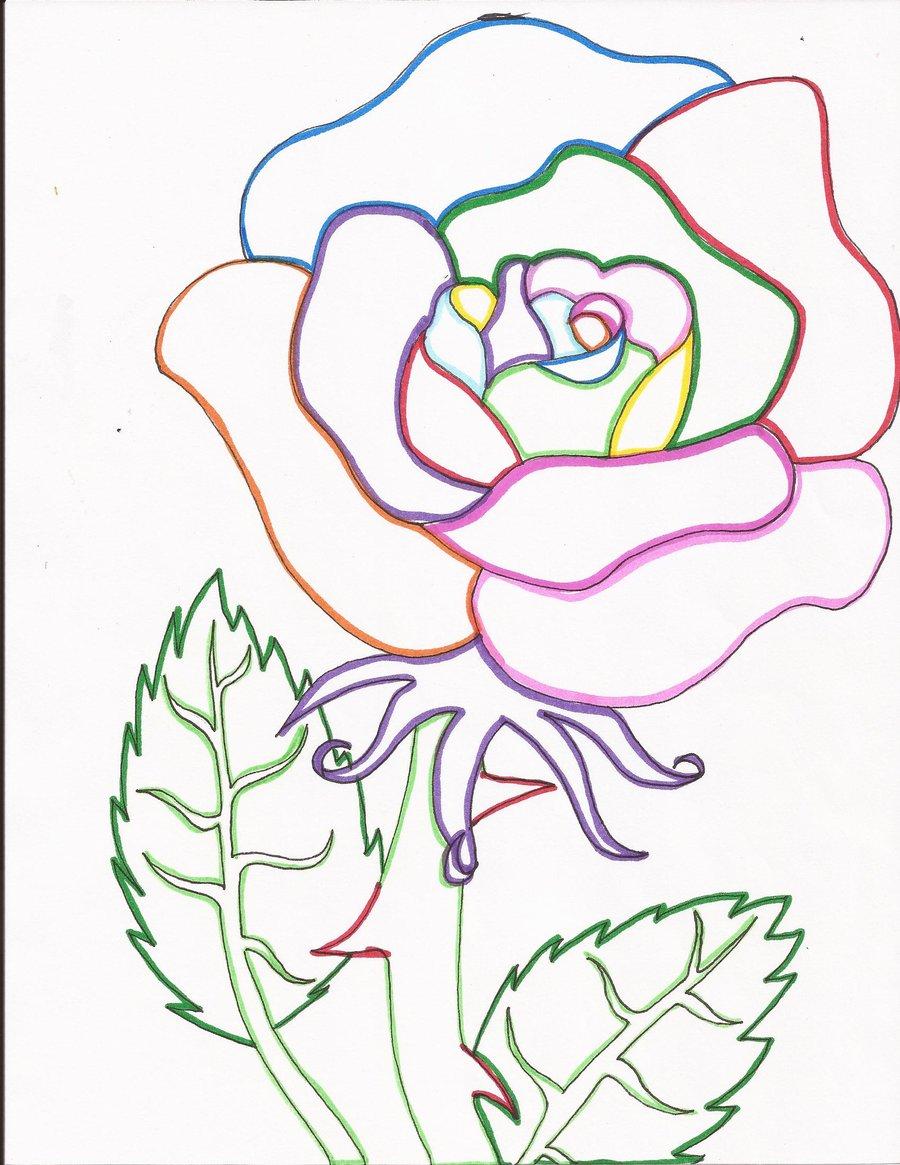 900x1165 Rainbow Rose Line Art By Day Week