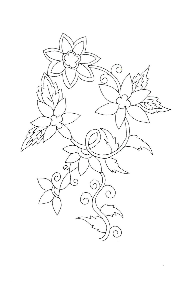 736x1143 Simplified Flower Drawings From India 459 Best Images