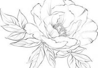 200x140 Best Images Of Sketches Of Flowers 17 Best Ideas About Flower