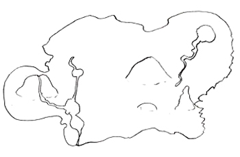 350x229 How To Draw A Pirate Map