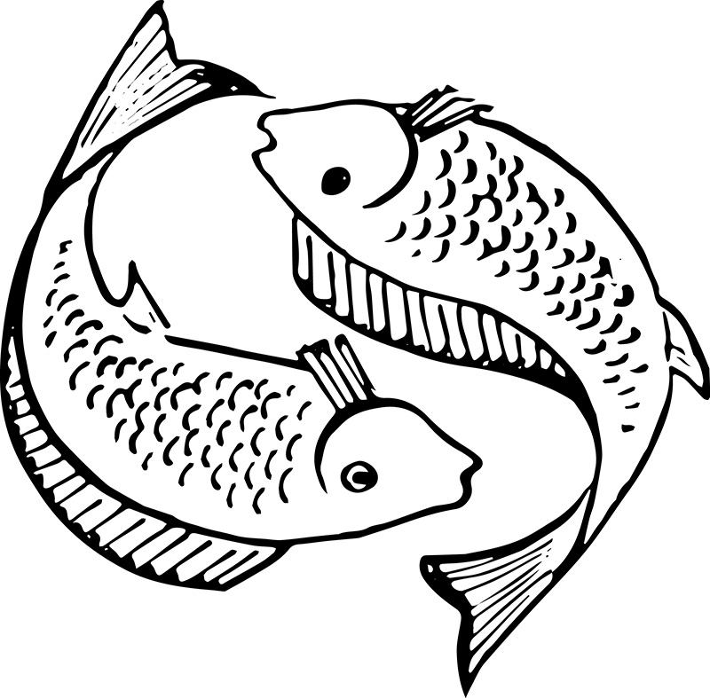 Pisces Fish Drawing At Getdrawings Free For Personal Use