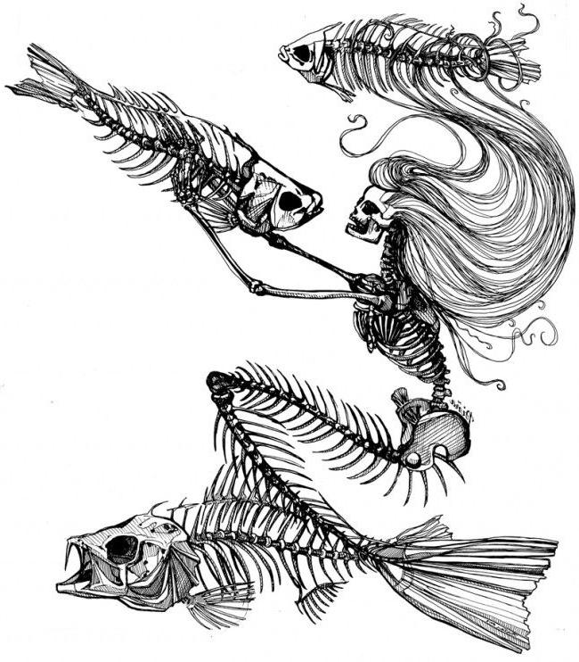 650x742 Mermaid Skeleton Tattoo Sketch Best Tattoo Ideas Gallery