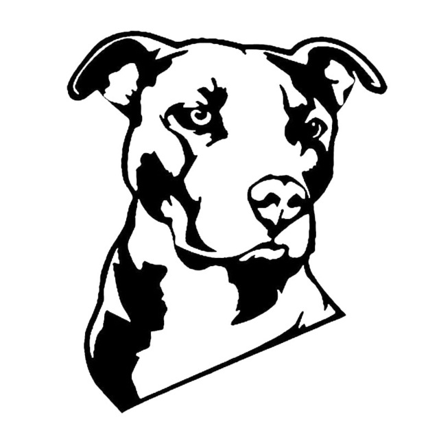640x640 12.715.2cm Pitbull Creative Cartoon Dog Vinyl Decal Cool Animal