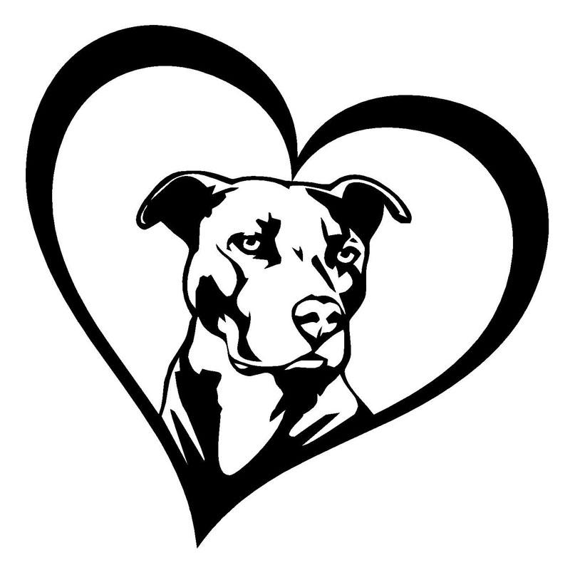 800x800 Pitbull Heart Motor Car Stickers And Decals