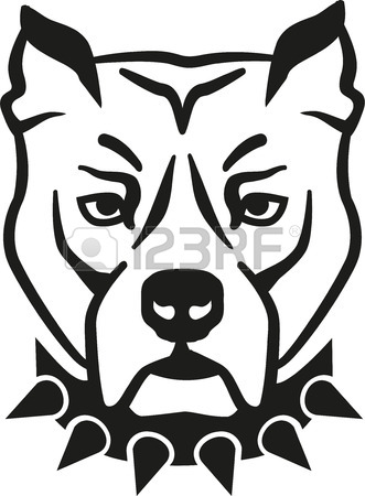 331x450 Pit Bull Dog Stock Photos. Royalty Free Business Images