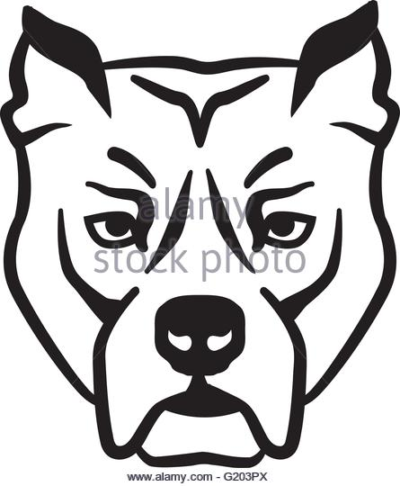 445x540 Pit Bull Stock Vector Images