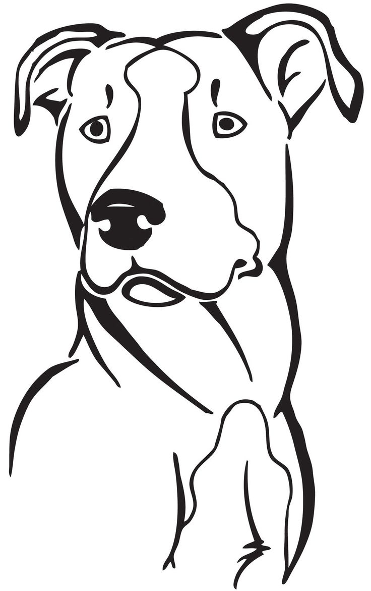 736x1171 Pitbull Cartoon Drawing 69 Best Dogs Images