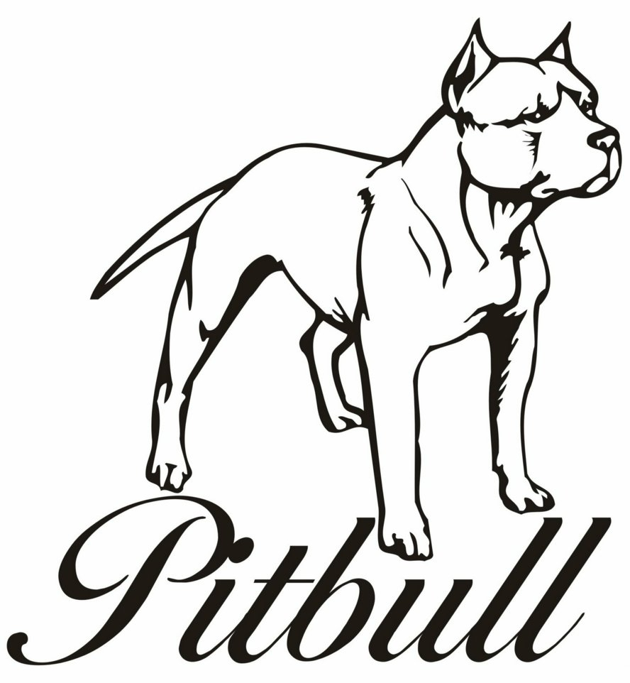 888x962 Pitbull Cartoon Drawing Pit Bull Clipart Free Download Clip Art