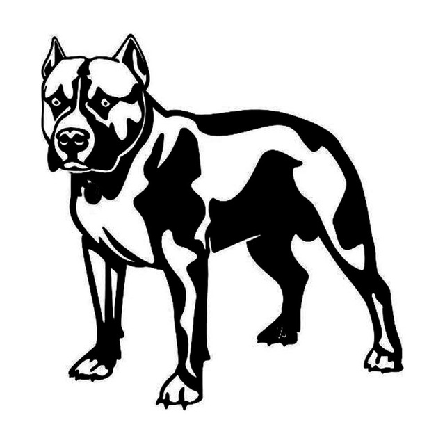 640x640 14.415cm Pitbull Dog Fashion Animal Car Sticker Classic Cartoon