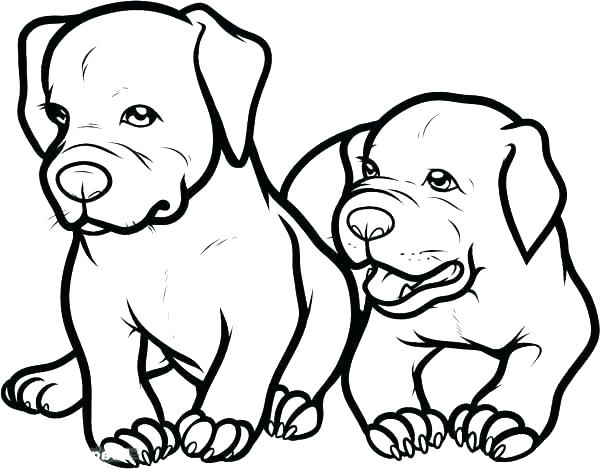 600x469 Minimalist Pitbull Coloring Pages Best Of Dog Page Adult Two