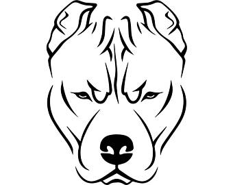 340x270 Pit Bull Drawing Etsy