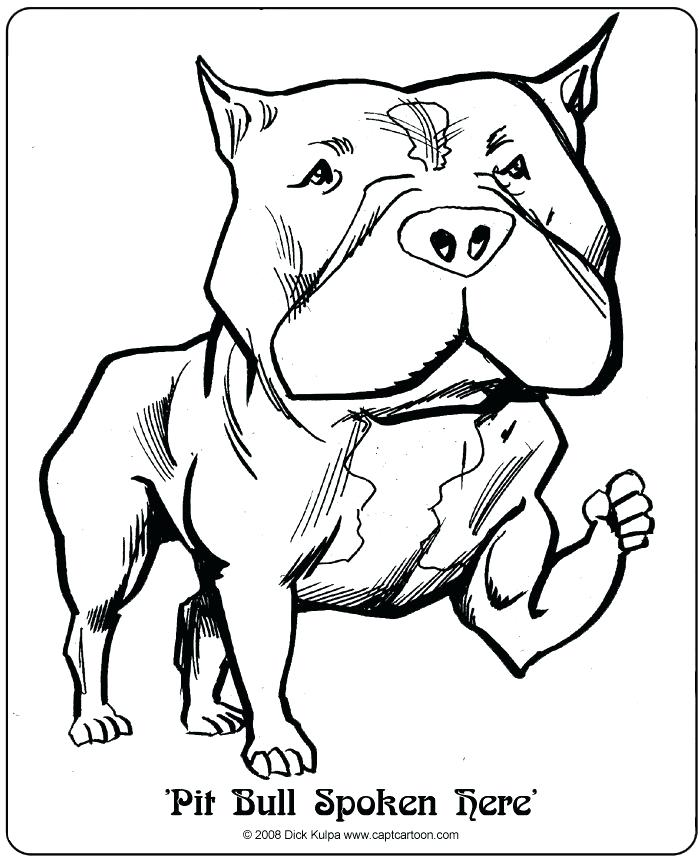 700x857 Pitbull Coloring Pages As Dog Coloring Pages Realistic Pitbull