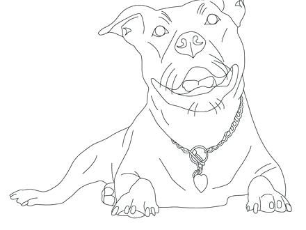 440x330 Pitbull Coloring Pages From Shelter Dog Page