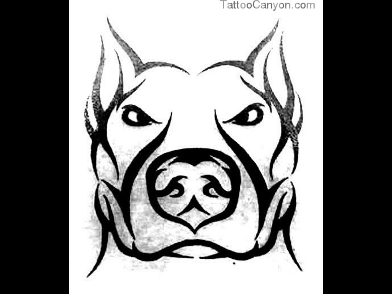 1600x1200 Pitbull Drawings
