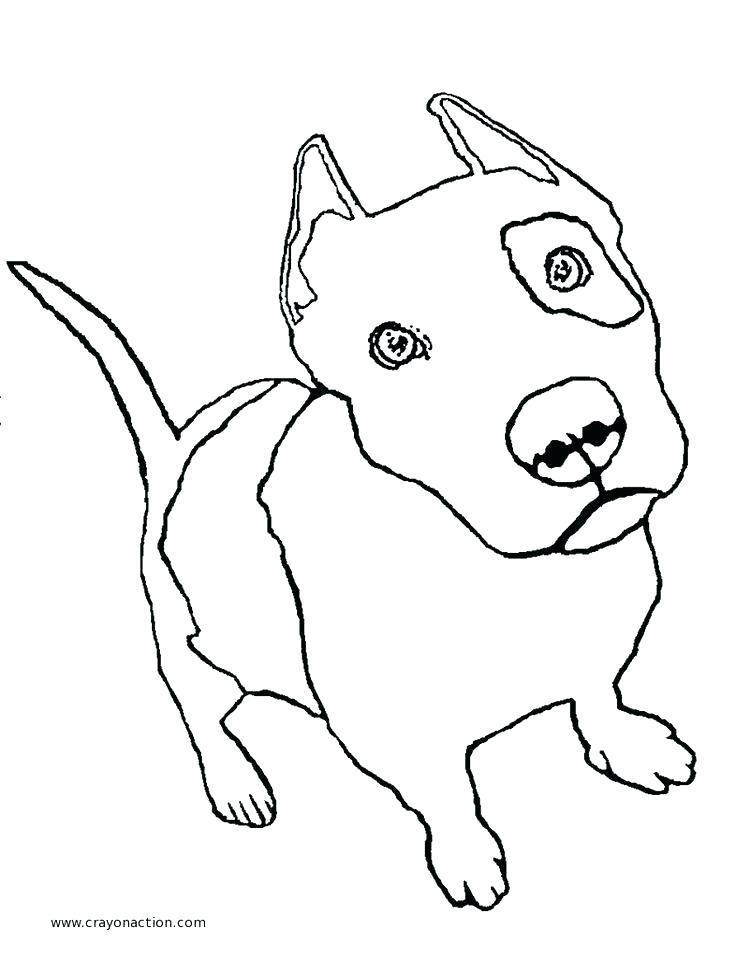 736x959 Drawn Pitbull Wolf 3407836