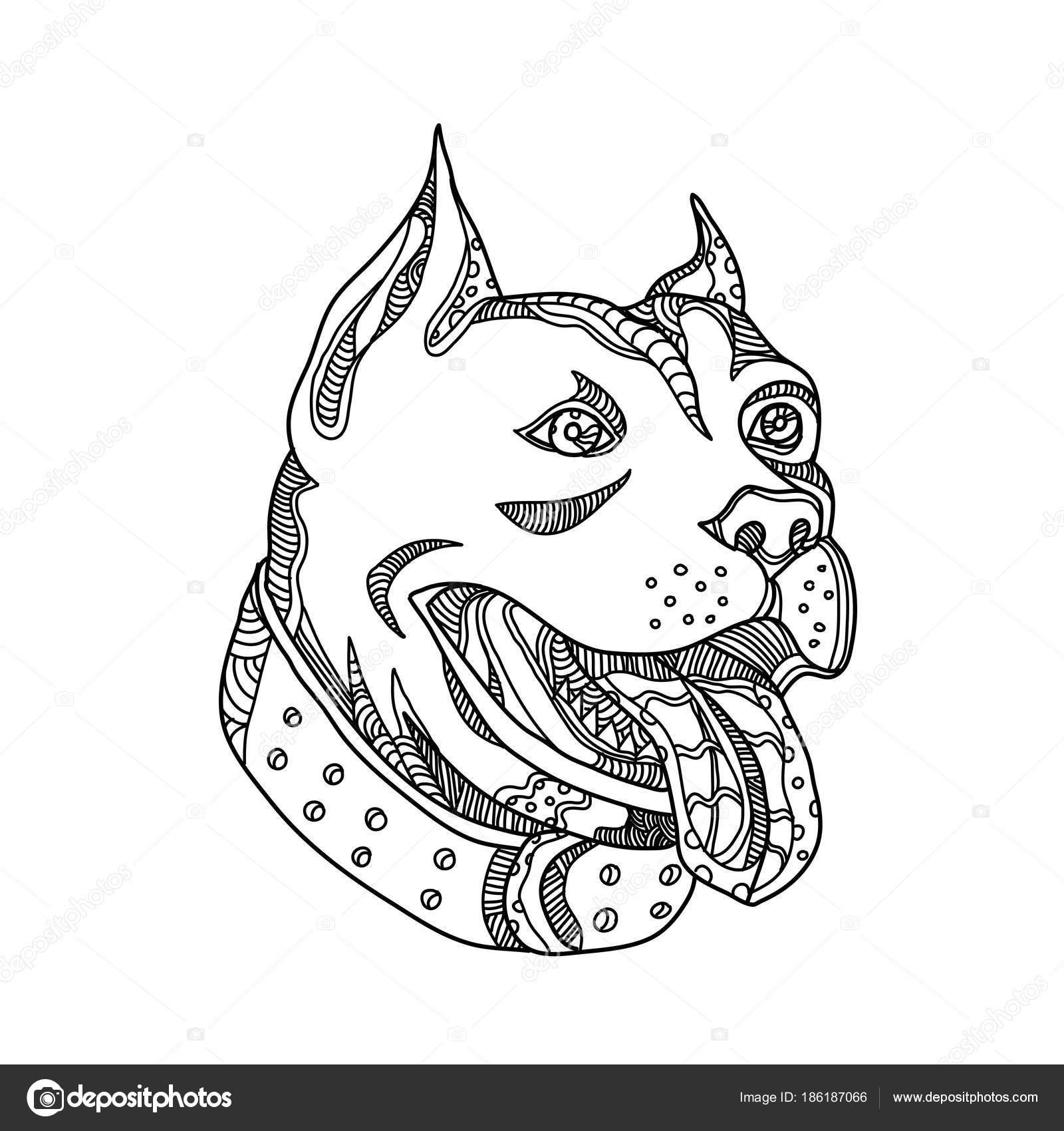 1600x1700 Pit Bull Head Doodle Art Stock Vector Patrimonio