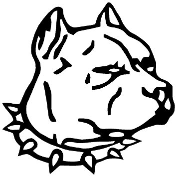 355x355 Pirate City Pitbull Dog Head Decal Window Sticker
