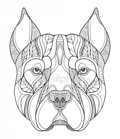 388x450 Pit Bull Terrier Head Zentangle Stylized, Vector, Illustration
