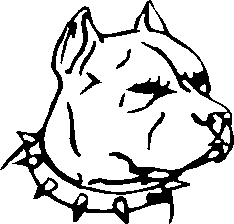 475x454 Pit Bull Head, 94rbd,