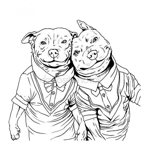 450x450 Pitbull Stock Vectors, Royalty Free Pitbull Illustrations