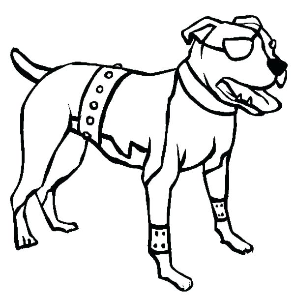 pitbull coloring pages - photo#39